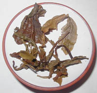 Infusion of sheng puer called Mini Menghai 1999